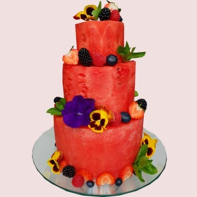 NEW! The Watermelon Cake